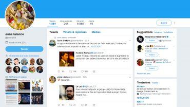 Le compte Twitter en question, @enimar68, au nom d'Anne Lalanne, permet depuis avril 2013 à la présidente du FN de commenter de façon anonyme la vie politique et médiatique, d'y insulter parfois ses opposants ou de tacler des journalistes.