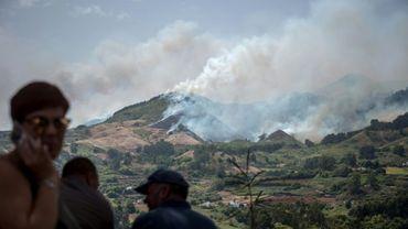 Des habitants observent le 18 août 2019 l'incendie qui a ravagé près de 1.500 hectares de forêt sur l'île espagnole de Grande Canarie