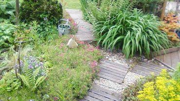 Le jardin de Dominique : la spontanéité maîtrisée
