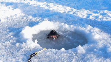 L'hypothermie est un phénomène très fréquent dans les zones boréales