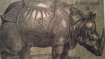 Albrecht Dürer - Le Rhinocéros - L'estampe au temps de Bruegel