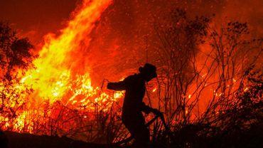 Un pompier combat un feu de forêt dans la province de South Sumatra, en Indonésie, le 11 septembre 2019