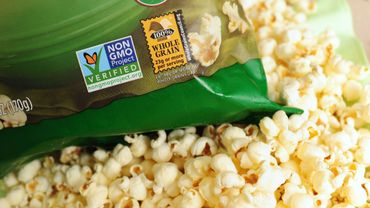France: le Conseil d'Etat suspend l'interdiction de cultiver un maïs OGM