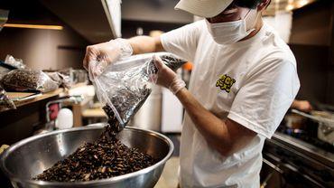 Yuta Shinohara, jeune cuisinier à Tokyo féru de nature, a décidé de tester un assaisonnement supplémentaire: des criquets.
