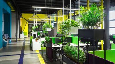 L'aspiration à des espaces de travail sains et respectueux de la nature pourrait s'accélérer