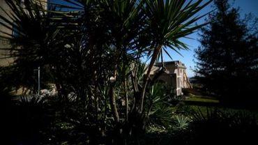 """Vue du monatère """"Mater Ecclesiae"""" à travers la végétation, le 19 février 2013"""