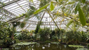Reconnaissance internationale pour le Jardin botanique de Meise