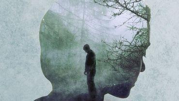 """""""La jeune fille dans le brouillard"""", un excellent thriller qui rend hommage aux films noirs des années 50"""