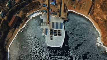 Photo aérienne prise le 22 janvier 2019 de bassins où sont entassés des mammifères marins, à Nakhodka, dans l'Extrême-Orient russe.