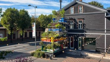 Des jardins verticaux pour mesurer l'impact d'un environnement urbain sur les plantes.
