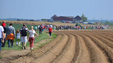 Une longue file de manifestants dans les champs de Pont-à-Celles