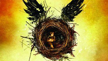 "JK Rowling, ""Harry Potter et l'enfant maudit"""