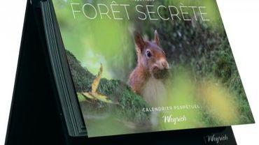 Foret Secrete