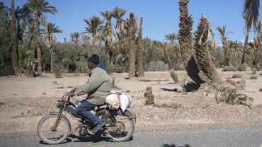 Un homme à moto le 27 janvier 2020 dans l'oasis de Skoura, dans le sud-est du Maroc, menacée d'extinction par le dérèglement climatique
