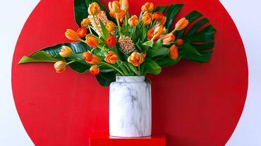 La plante du mois est la tulipe.