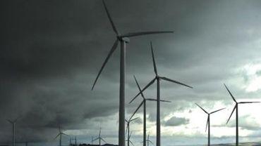 Moins d'éoliennes mais mieux placées, a décidé le gouvernement wallon