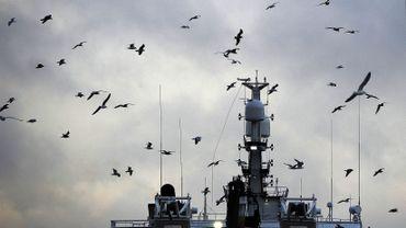 La Commission européenne propose d'augmenter les quotas de pêche de 27 espèces