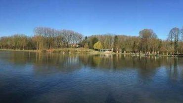 A Nivelles, le taux de mortalité des poissons dans les étangs de la Dodaine est revenu à la normale.
