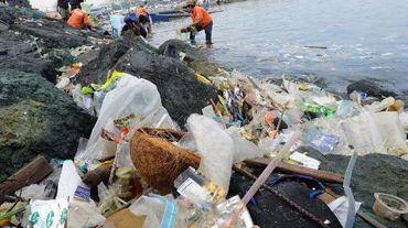 Des déchets sont rammassés par des volontaires dans la baie de Manille le 3 juillet 2014