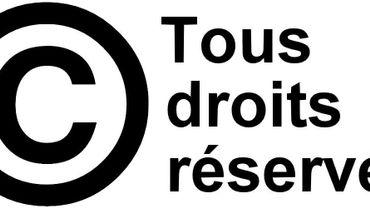 «Il faut rémunérer les auteurs, mais pas de cette manière-là» défend Séverine Dusollier, professeur en droit d'auteur