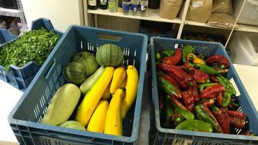 De beaux légumes pour colorer les assiettes des petits