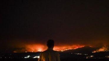 Pas d'indication de la présence de Belges parmi les victimes de l'incendie de forêt au Portugal