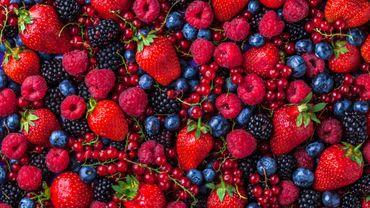 Fruits rouges : quels sont leurs bienfaits ?