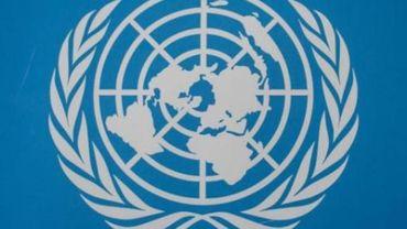 Assemblée générale de l'ONU - Objectifs de développement durable: des pistes pour la mise en oeuvre en Belgique