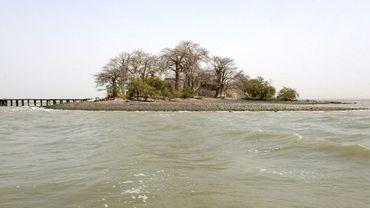 """L'île James située sur le fleuve Gambie, prise en photo le 8 avril 2017, porte aujourd'hui  le nom de Kunta Kinté, héros du livre """"Racines"""" de l'écrivain afro-américain Alex Haley"""