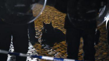 Des policiers et leur chien blessés dans une bagarre générale à Ladeuze