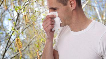 Chaque année, le printemps est une période sensible pour les 20% des Français sujets à des crises dues aux pollens.