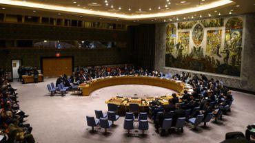 Crise au Venezuela: les Européens du Conseil de sécurité appellent à un scrutin présidentiel