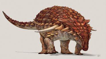 Un nouveau dinosaure, très bien préservé, décrit en détail