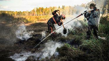 Des militants de Greenpeace luttent contre des feux souterrains, le 11 septembre 2020 dans la forêt de Souzounski, au sud de Novossibirsk, en Sibérie