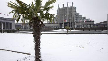 Dimanche, la neige a fait fondre le nombre des visiteurs