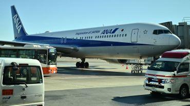 Un Boeing de la compagnie All Nippon Airways en provenance de la ville chinoise de Wuhan pour évacuer des ressortissants japonais, après son atterrissage à l'aéroport de Tokyo, le 29 janvier 2020 au Japon