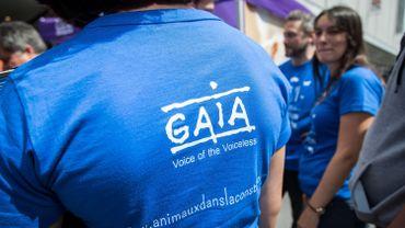 Plus de 3 Bruxellois sur 4 sont contre l'abattage sans étourdissement, selon un sondage de GAIA