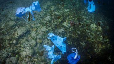 Des masques de protection et des gants ont été retrouvés dans sept grands fleuves européens en juin, a indiqué une porte-parole de la Fondation Tara, alertant sur le danger de cette pollution plastique liée à la crise sanitaire