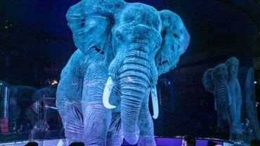 Cet éléphant grandeur nature est un hologramme