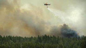 Ce feu de forêt a détruit une surface de quelque 100 kilomètres carrés dans l'ouest du pays.