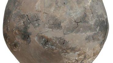 Une jarre néolithique retrouvée en Géorgie, photo fournie par le Georgian National Museum le 13 novembre 2017.