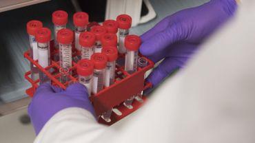 Papillomavirus: un virus qui touche les filles, mais aussi les garçons