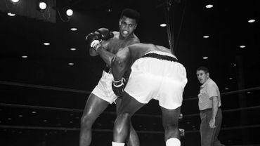 Photo prise le 25 février 1964, à Miami, lors du match à l'issu duquel le boxeur américain a remporté le titre de champion du monde.