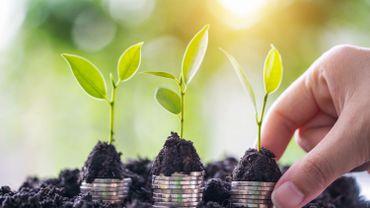 Investir son argent dans un projet durable? Il existe 500 produits financiers labellisés en Belgique