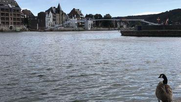 """Namur : la passerelle """"L'Enjambée"""" a été mal soudée"""