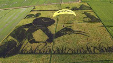 Plus particulièrement, les 100 prix Nobel visent la campagne de Greenpeace contre le riz doré OGM