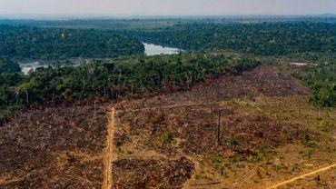 Photo fournie par le département de la communication de l'Etat du Mato Grosso au Brésil montrant la déforestation dans la municipalité de  Colniza, le 29 août 2019