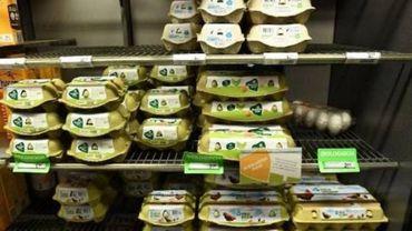 Oeufs contaminés: 9 lots d'œufs sur 10 ne font plus l'objet d'un rappel, après enquête
