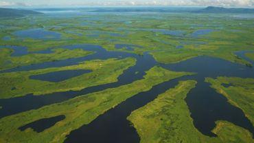 Le Pantanal, la plus grande zone humide de la planète, le 8 mars 2018 en territoire brésilien, dans l'État du Mato Grosso