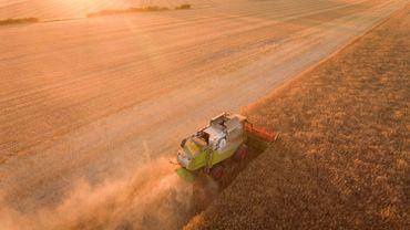 Les champs en région limoneuse se vendent en moyenne 36.000€/ha alors qu'à l'extrême sud de la Wallonie, les terres agricoles se négocient autour de 10.000€/ha